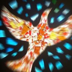 Photo : Journée de la Paix 2009