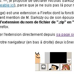 Photo : Sarkofree 1.5 efface Nicolas Sarkozy et Carla Bruni sur le web