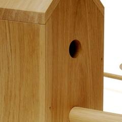 Photo : Maison pour oiseaux urbains