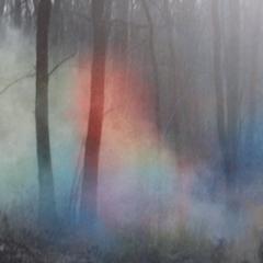 Photo : Fumées de couleurs