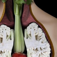 Photo : 5 fruits et légumes ...