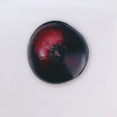 Photo : Calendrier de l'oignon