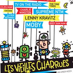 Photo : Festival des Vieilles Charrues 2009