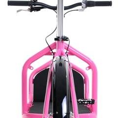 Photo : Vélos cargo Bullitt