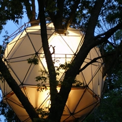 Photo : O2 Treehouse : maison dans les arbres