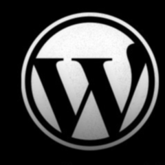 Photo : Comment maîtriser Wordpress ?