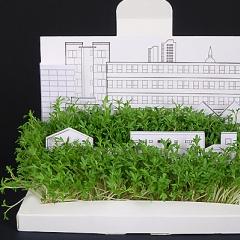 Photo : Cartes postales jardin