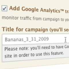 Google Analytics API !