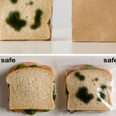 Photo : Antivol pour sandwich !