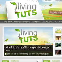 Photo : Living Tuts