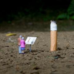 Photo : Little people