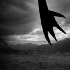 Photo : Tim Burton lance Burtonstory.com