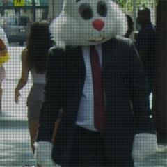 Photo : Bunnylicious