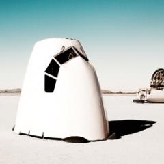 Photo : Oiseaux du désert