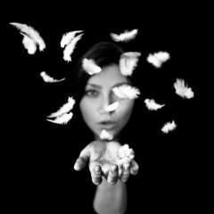 Image : Benoit Courti : Deep Black