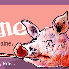 Photo : Fièvre Cochonne