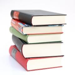 Photo : Livres favoris des blogueurs 2013