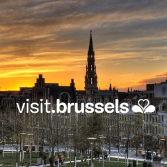 Image : Le Marketing digital de #Visitbrussels