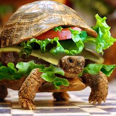 Ninja burger ?