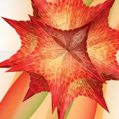 Photo : Wolfram Alpha