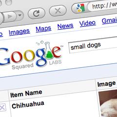 Photo : Google Squared