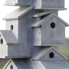 Photo : HLM pour oiseaux