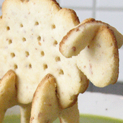 Photo : Mouton biscuit