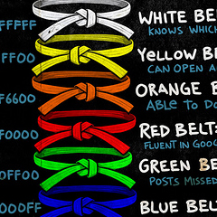 Photo : Quelle ceinture êtes-vous ?