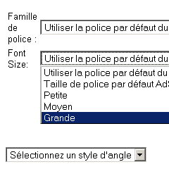 Photo : Taille de police Adsense
