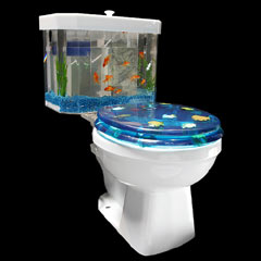 Photo : Toilettes aquarium