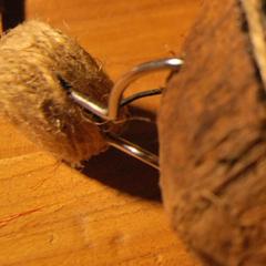 Photo : Casque noix de coco