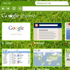 Photo : Thèmes Google Chrome