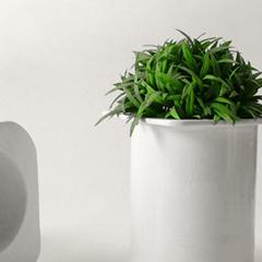 Photo : Yaourt de plantes