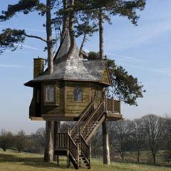 Photo : Maison dans les arbres