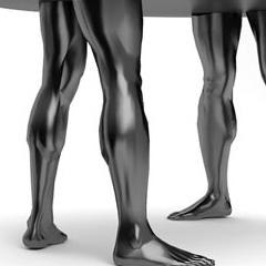 Photo : Table humaine