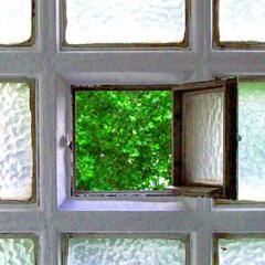 Photo : Que voyez vous depuis votre fenêtre ?